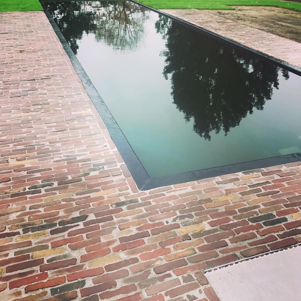 Zwemvijvers - Cis Van der Linden Tuinaanneming en -Architectuur